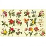 Декупажна хартия, 60 g/m2, 33 x 48 cm, 1л, Градински цветя