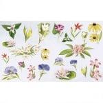 Декупажна хартия, 60 g/m2, 33 x 48 cm, 1л, Летни цветя